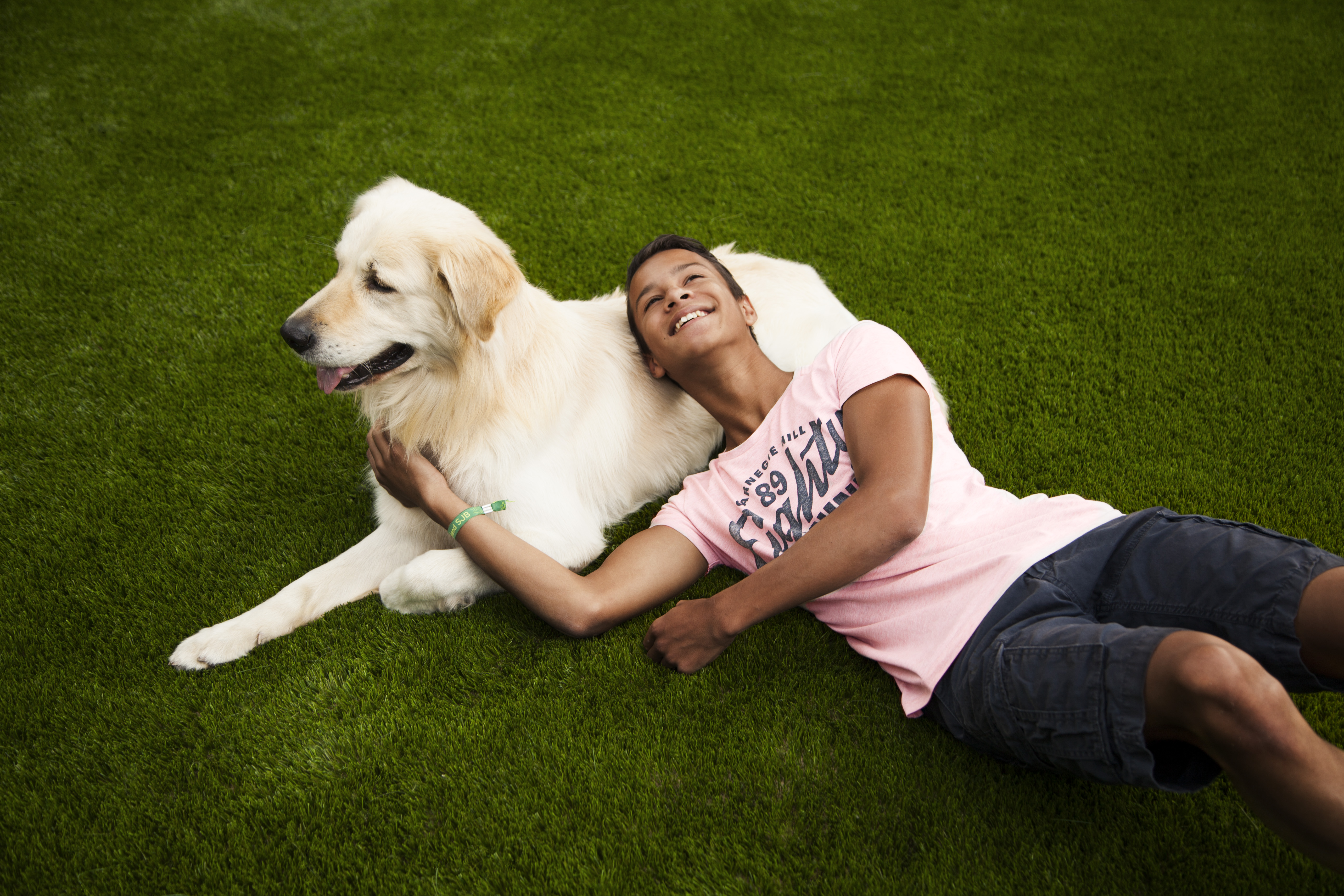 how to clean artificial grass dog urine uk